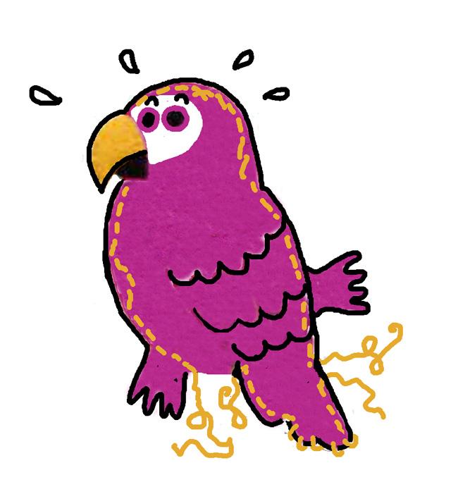 joparrotflat School Parrots